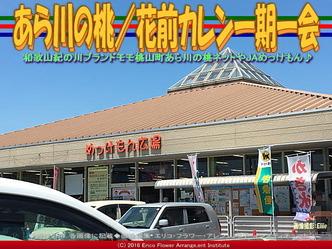 あら川の桃/花前カレン一期一会画像02