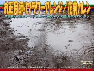 お正月飾りフラワーアレンジ/花前カレン画像02