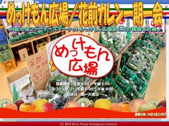 めっけもん広場(3)/花前カレン一期一会画像03