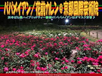 パパメイアン(4)/花前カレン@京都国際芸術院画像01 ▼画像クリックで640x480pxlsに拡大@エリ子花前カレン