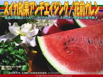 西瓜効能アンチエイジング/花前カレン画像02
