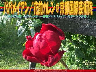 HTパパメイアンHauteur/京都国際芸術院画像01 ▼画像クリックで640x480pxlsに拡大@エリ子花前カレン