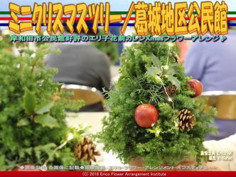 ミニクリスマスツリー完成/岸和田フラワーアレンジ画像02 ▼画像クリックで640x480pxlsに拡大@エリ子花前カレン