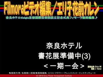 Filmoraビデオ編集(7)/エリ子花前カレン画像01 ▼画像クリックで640x480pxlsに拡大@エリ子花前カレン