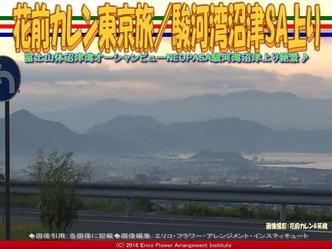 花前カレン東京旅(3)/駿河湾沼津SA上り画像01