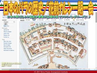 日本のバラの歴史(5)/花前カレン画像03