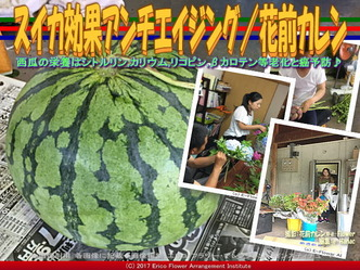 スイカ効果アンチエイジング(5)/花前カレン画像02