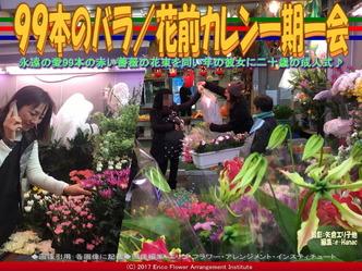 99本のバラ(2)/花前カレン一期一会画像03