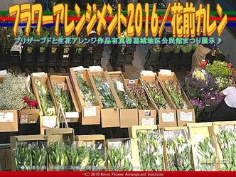 フラワーアレンジ市場編/公民館まつり2016花前カレン画像03