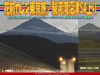 花前カレン東京旅/駿河湾沼津SA上り画像01