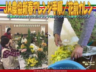 JA農協新春アレンジ手順(5)/花前カレン画像01 ▼画像クリックで640x480pxlsに拡大@エリ子花前カレン