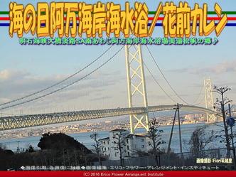 海の日淡路島/花前カレン画像03