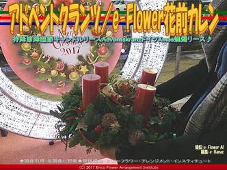 アドベントクランツ/e-Flower花前カレン画像01▼画像クリックで640x480pxlsに拡大@エリ子花前カレン