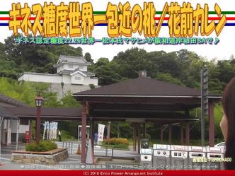岸和田SA包近の桃/花前カレン画像01