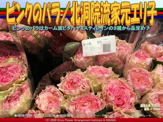 ピンクのバラ(2)/北洞院流家元エリ子画像02 ▼画像クリックで640x480pxlsに拡大@北洞院エリ子花前カレン