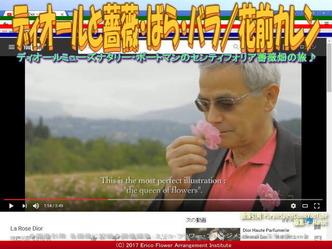 ディオールとばら(4)/花前カレン画像03