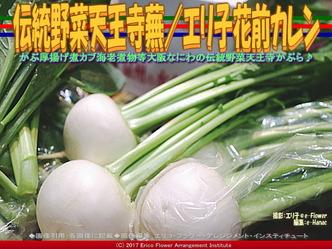伝統野菜天王寺蕪(4)/エリ子花前カレン画像01