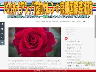 HTパパメイアンMeilland/京都国際芸術院画像02 ▼画像クリックで640x480pxlsに拡大@エリ子花前カレン
