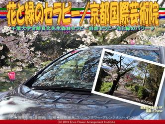花と緑のセラピー(2)/京都国際芸術院画像02 ▼画像クリックで640x480pxlsに拡大@エリ子花前カレン