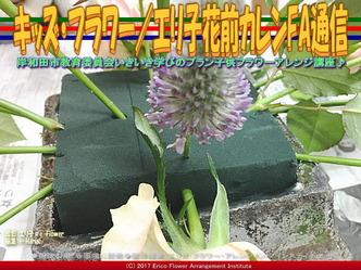 キッズ・フラワー(7)/エリ子花前カレンFA通信画像02