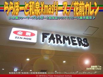 ららぽーと和泉Xmasリース/花前カレン画像01