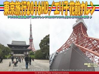 東京旅行2016HD/エリ子花前カレン画像02 ▼画像クリックで640x480pxlsに拡大@エリ子花前カレン