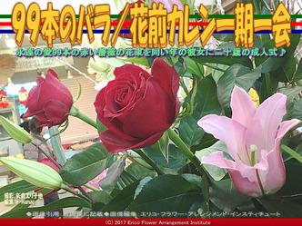 99本のバラ(2)/花前カレン一期一会画像01