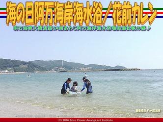 南淡路阿万海岸海水浴/花前カレン画像02