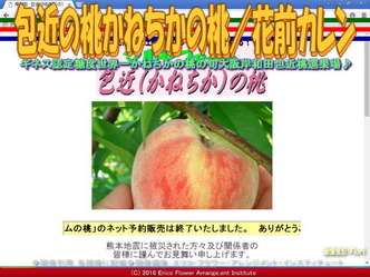 包近の桃/花前カレン一期一会画像02