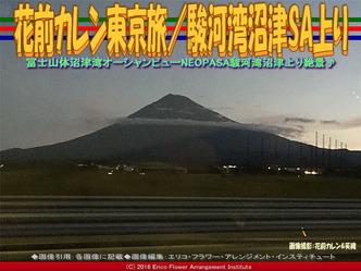 花前カレン東京旅/駿河湾沼津SA上り画像02
