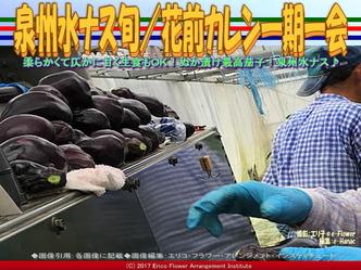 泉州水ナス旬(5)/花前カレン一期一会画像02