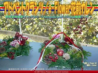 アドベントクランツ(2)/e-Flower花前カレン画像02 ▼画像クリックで640x480pxlsに拡大@エリ子花前カレン