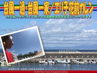 台風一過・台風一家(2)/エリ子花前カレン画像01