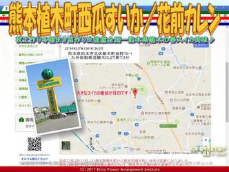 熊本植木町西瓜すいか(5)/花前カレン画像02