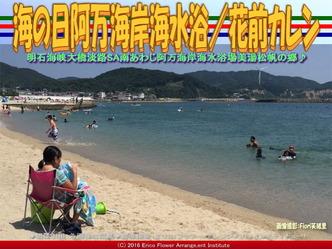 南淡路阿万海岸海水浴/花前カレン画像01
