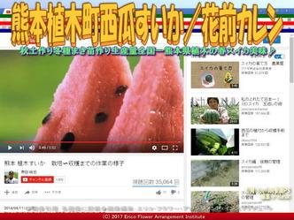 熊本植木町西瓜すいか(9)/花前カレン画像01