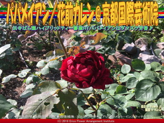 パパメイアン/花前カレン@京都国際芸術院画像01 ▼画像クリックで640x480pxlsに拡大@エリ子花前カレン
