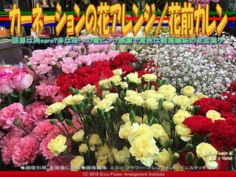 カーネーションの花アレンジ(5)/花前カレン画像01 ▼画像クリックで640x480pxlsに拡大@エリ子花前カレン