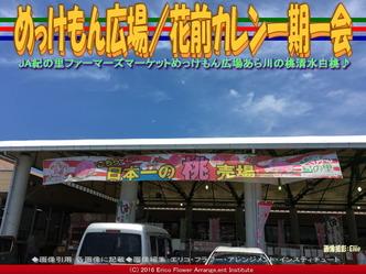 めっけもん広場/花前カレン一期一会画像03