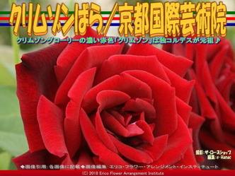 クリムゾンばら(7)/京都国際芸術院画像02▼画像クリックで640x480pxlsに拡大@エリ子花前カレン
