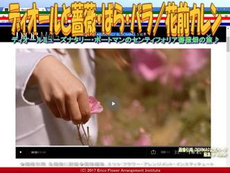ディオールと薔薇(3)/花前カレン画像02