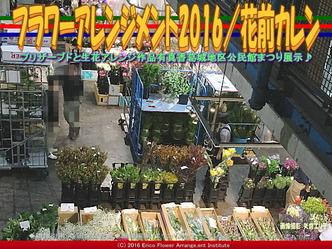 フラワーアレンジ市場(2)/公民館まつり2016花前カレン画像01