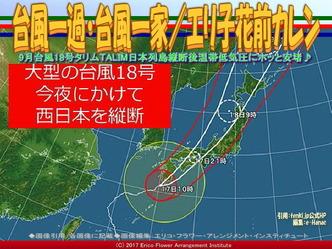 台風一過・台風一家(2)/エリ子花前カレン画像02