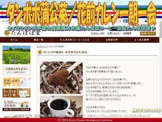タンポポコーヒー/花前カレン画像02