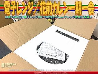 電子レンジ(4)/花前カレン一期一会画像02
