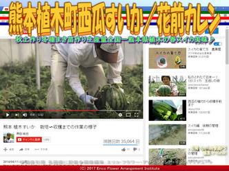 熊本植木町西瓜すいか(8)/花前カレン画像01