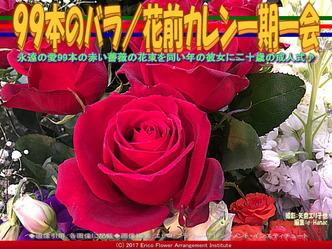 99本のバラ(4)/花前カレン一期一会画像01