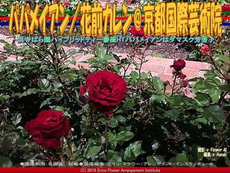 パパメイアン/花前カレン@京都国際芸術院画像02 ▼画像クリックで640x480pxlsに拡大@エリ子花前カレン