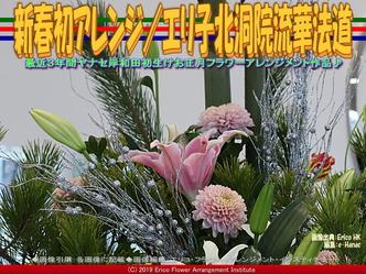 新春初アレンジ(7)/エリ子北洞院流華法道画像01▼画像クリックで640x480pxlsに拡大@エリ子花前カレン