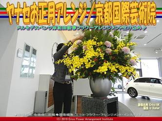 ヤナセお正月アレンジ(5)/京都国際芸術院画像02▼画像クリックで640x480pxlsに拡大@エリ子花前カレン